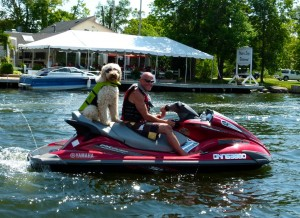 Everybody and his dog is out riding on Trent Severn Waterway Sea Doo Tour